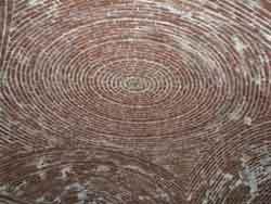a brick ceiling