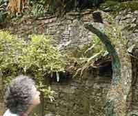 I meet a mosaic snake